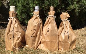baggedbottles